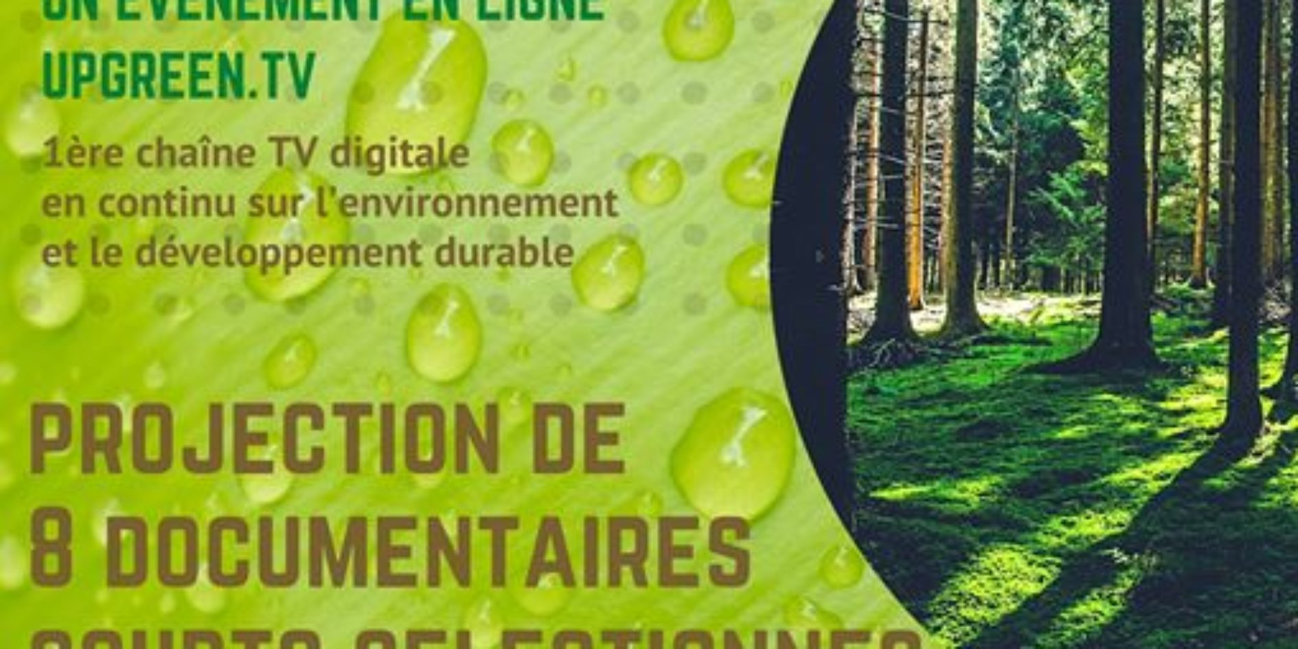 Affiche festival journée green documentaire Upgreen TV